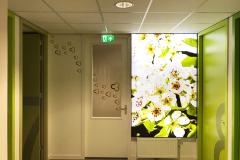 Medisch Centrum Zandweg